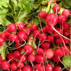 The oft under-appreciated radish is a versatile little vegetable.