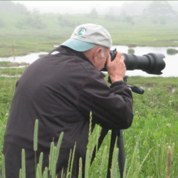 Photographing in the Weskeag Marsh.