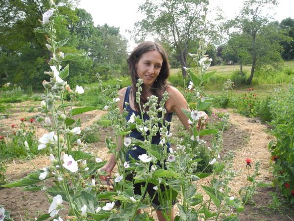 Union herbalist creates elixers, teas, tonics from garden ...