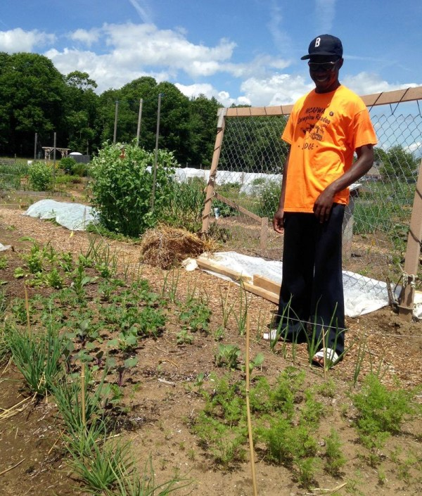 Congolese Gardener Puts Down Roots In Brunswick