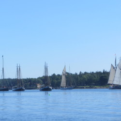 The Great Schooner Race aboard the Schooner Olad