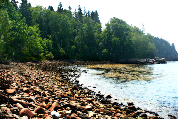 Visitors from around the world flock to Acadia National Park to view its rockbound coast.