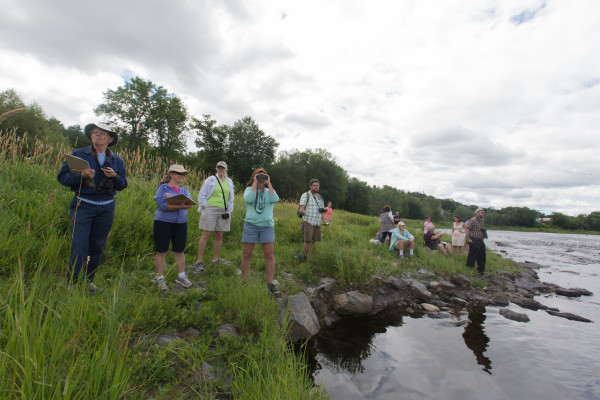 Spectators wait for racers at the finish line at the Penobscot River Whitewater Nationals Regatta Thursday morning.