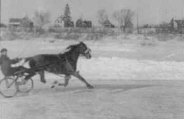 10184943_H15531225 hallowell historian unearths golden era of maine harness racing