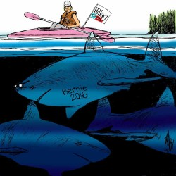 Super cool after-school program on sharks offered at Jesup library Wed. May 1