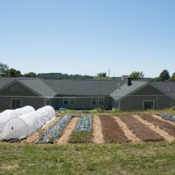 Waldo County reentry center garden project sows educational rewards