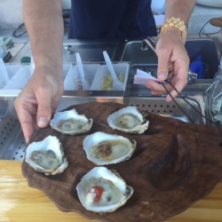 Hip vibe on the half shell, at Portland's acclaimed Eventide Oyster Co.