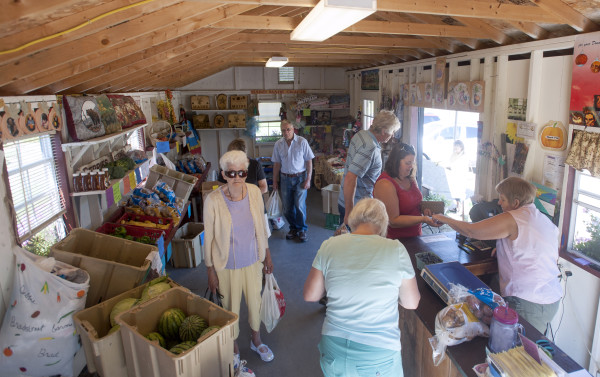 The farm stand at the Bradstreet Farm in Newport gets busy on Friday mornings. Owners Debbie and Seth Bradstreet are among the farmers who participate in the Maine Senior FarmShare program, which provides nearly 17,000 people age 60 and older with a $50 incentive to buy fresh local produce and support Maine farmers.