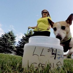 Dogs sniff out human waste, bacteria along Maine's coast