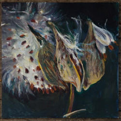 Lubec artist Leslie Bowman's work from her Milkweed Series, oil on panel, will be part of a solo exhibit at the Machias Bay Chamber of Commerce during the month of September. An opening reception will be part of the Machias First Friday Art Walk, 5-7 p.m. Friday, Sept. 4. Nine other downtown locations will be hosting artists, musicians and others.