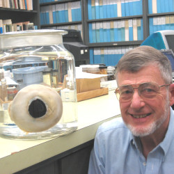 The eyeball of a giant squid, and Dr. Roper