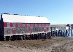 Quoddy Artists Studio Tour - Lubec, Eastport, Campobello Island and Beyond