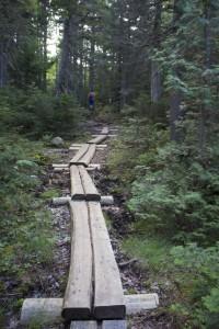 Sandy Stream Pond Trail