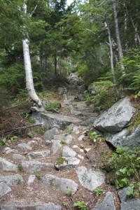 What much of South Turner Mountain Trail looks like. Rocks.