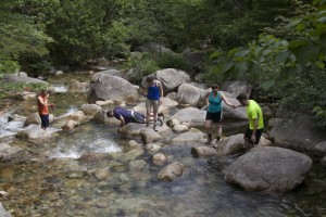 My hiking group cooling off in Roaring Brook after the hike.