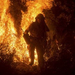 Central California wildfire burns out of control, threatens scores of homes