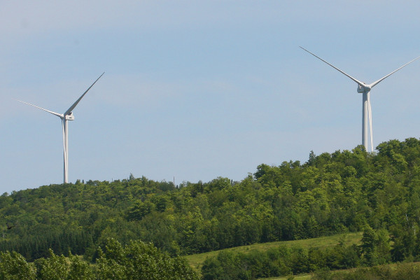 A total of 48 wind turbines have been erected in Oakfield by SunEdison, Inc.
