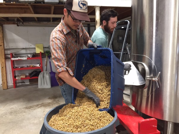 Joel Alex of Blue Ox Malthouse removes steeped barley from a malt tank as employee David Brand assists on July 8.