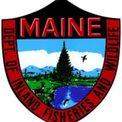 Trout Sale at the Piscataquis County Soil and Water Conservation District