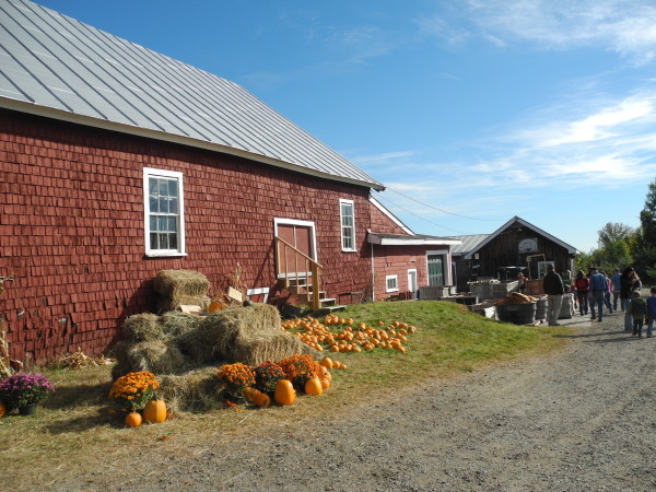 The Apple Farm features old-fashioned barn, old-timey ...