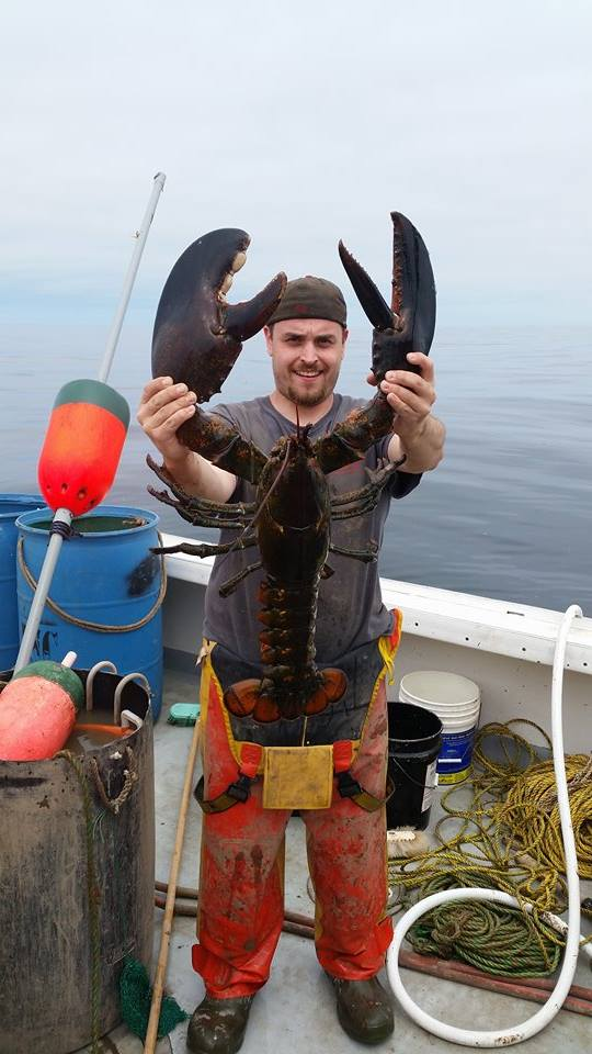 Ricky Louis Felice Jr. holds a lobster caught in May that he said was about three-and-a-half feet long.