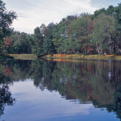 Public input sought on draft conservation plan for Sunkhaze Meadows, Carlton Pond