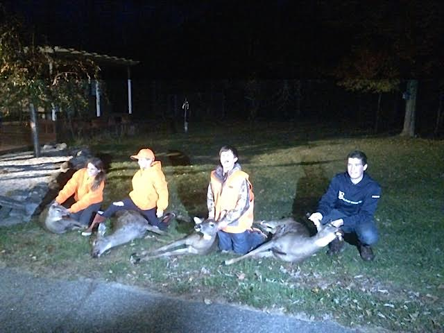 Friends' help, patience, luck lead to first deer