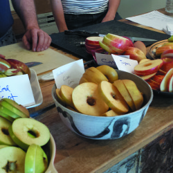 Heirloom Apple Day at Woodlawn