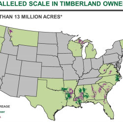 Plum Creek Timber CEO got $4.3M 2008 pay package