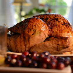 Proper food handling insures safe Thanksgiving