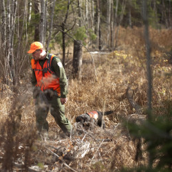 Missing hunter in Hammond found