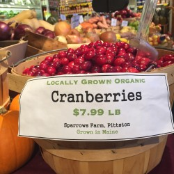 From bog to beautiful: Cranberry wreath company launches in Freeport