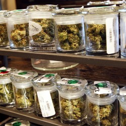 Maine can use marijuana legalization to improve public health — if it's done right