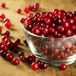 The wonder berry: the cranberry