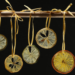Lemon and orange slices dry into pretty wheels to use as garnishes for drinks or baked goods, or as ornaments or even gift tags.