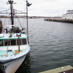 Nature Conservancy gets another Maine groundfishing permit