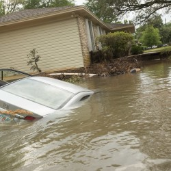 Don't plunge into buying a vehicle without a careful check for water damage