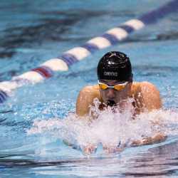 Strong start propels Cheverus girls to Class A state swim title