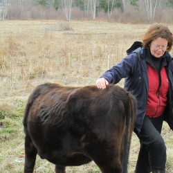There's more to local food sovereignty than Maine's Supreme Court has acknowledged