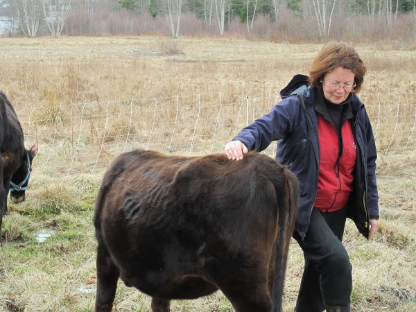 Deborah Evans, owner of Bagaduce Farm in Brooksville, Maine.