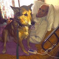 A visit from Corky the Shusky brightens the day of Michael Bayly in December 2014 at the skilled care facility in Borderview Manor in Van Buren. This past week, BDN reporter Julia Bayly brought her dad's ashes to his final resting place in his native Portland, Oregon.