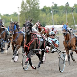 Hermon native records 1,000th career harness racing victory