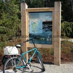 Acadia National Park's icy beauty