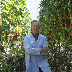 Canadian greenhouse giant buys Maine tomato grower Backyard Farms