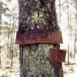 LePage won't take sides on Quimby's national park plan