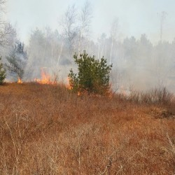 Wildfire danger remains high throughout Maine