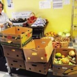 Report: Emergency food pantries become a mainstay