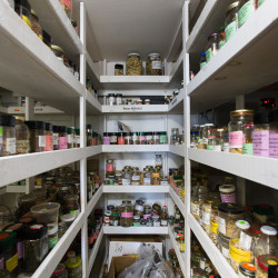 More than 800 varieties of seeds line shelves in a cooler at the Medomak Valley High School. The school's Heirloom Seed Project is the oldest and one of the largest high school-based seed saving programs in the country.