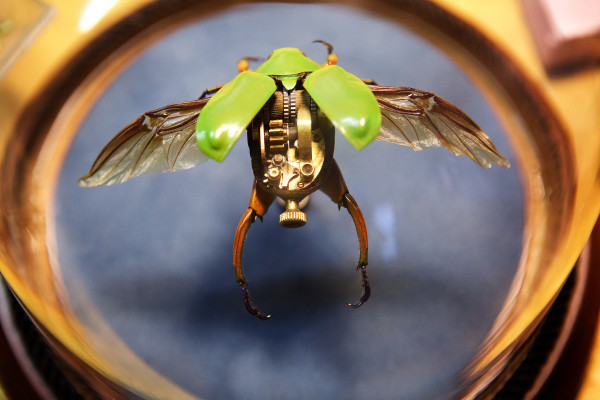 A scarab beetle, enhanced with mechanical oddments, is displayed under glass at Portland artist Mike Libby's studio on Congress Street. Libby makes his customized specimens under the Insect Lab moniker.