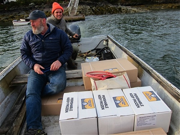 Fisherman Matt Luck, front in beard, delivers wild-caught salmon from Alaska to North Haven last fall.